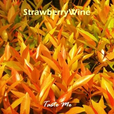 strawberrywine-taste-me